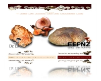 Website - www.effnz.co.nz